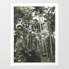 In the Jungle - Hawaii Art Print
