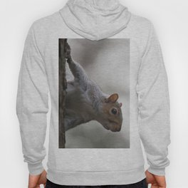Cheeky Squirrel Peek-a-boo Hoody