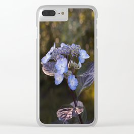Hydrangea at sunset Clear iPhone Case