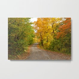 A Path Beyond Metal Print