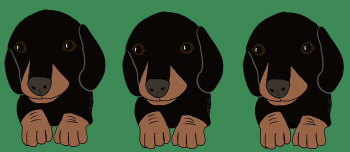 Dachshund Puppies Galore! Coffee Mug