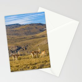 Group of Vicunas at Patagonia Landscape, Argentina Stationery Cards