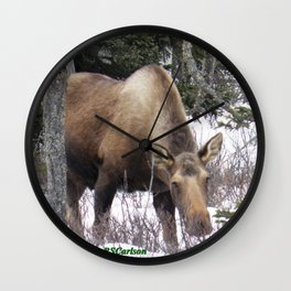 Roadside Browse Wall Clock