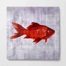 Salty Fish Metal Print
