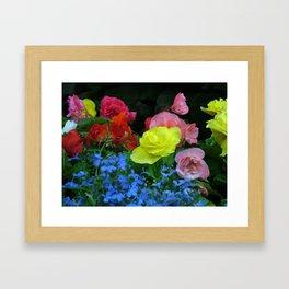 Flower pic 8 Framed Art Print