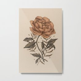 Peony and Ferns Metal Print
