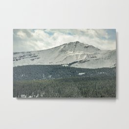 Snow Dusting Metal Print