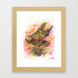 Canelo, the Chameleon Framed Art Print