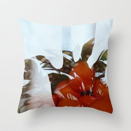 Count Throw Pillow