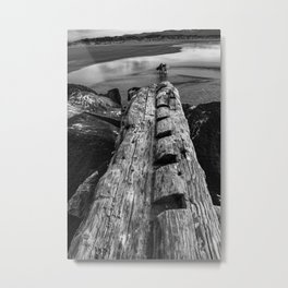 Surfers and Driftwood Metal Print
