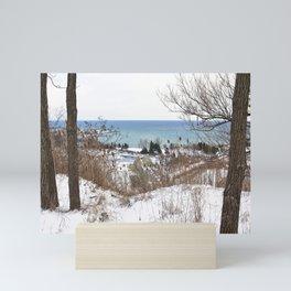 Scarborough Bluffs in Winter on December 27th, 2020. II Mini Art Print