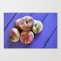 from the allotment Canvas Print