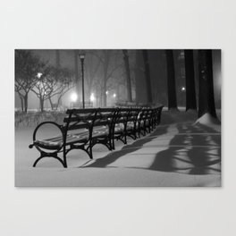 Shadows of the Storm Canvas Print
