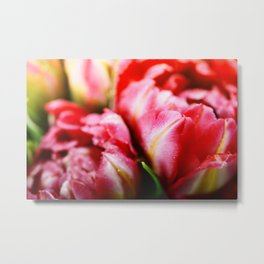 Fresh Pink tulips  background - selective focus Metal Print