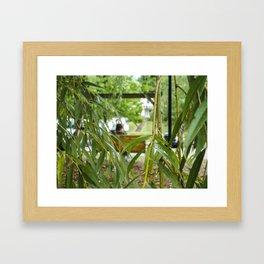 Through the Willow Tree Framed Art Print