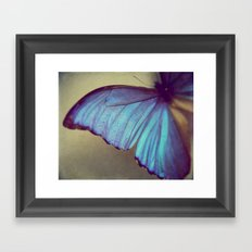 Blue Wing Framed Art Print
