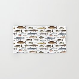 A Few Freshwater Fish Hand & Bath Towel