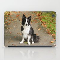 border collie iPad Cases featuring Sparkles the Border Collie by shamik