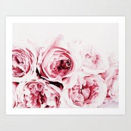 Pink Peonies Art Print By Synplus Art Print