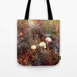 Three in the Moss Tote Bag