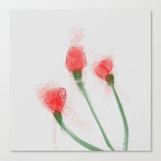 Red Buds Canvas Print