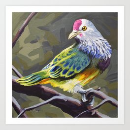 Mariana Fruit Dove Art Print
