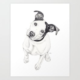 Rosco (Pit Mix) Art Print