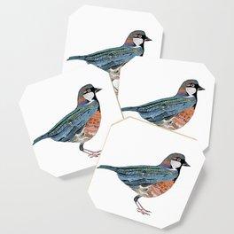Typographic Sparrow Coaster
