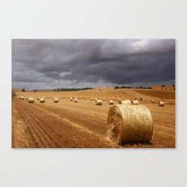 Harvest Before the Storm Canvas Print