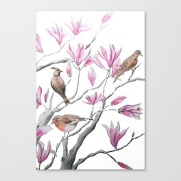 magnolia flowers and birds Canvas Print