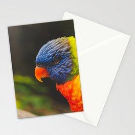 Lorikeet 02 Stationery Cards