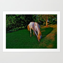 Equine Bowing Art Print