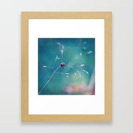 coccinelle Framed Art Print