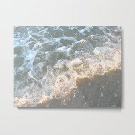 Wading Waters Metal Print