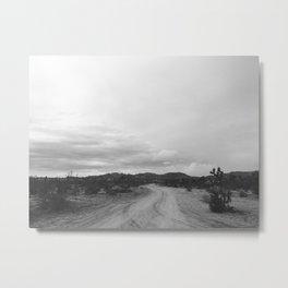 DESERT IV (B+W) / Joshua Tree, CA Metal Print