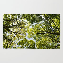 Into the Trees Rug