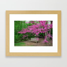 Grounds for Spring Framed Art Print