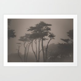 Sutro Shadows Art Print