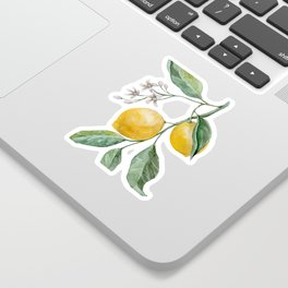 Lemon Branch watercolor Sticker