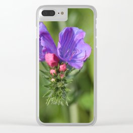 Viper's bugloss blue and pink flowers 2 Clear iPhone Case