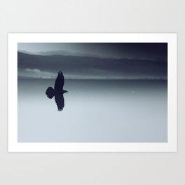 Crow And His Shadow Art Print