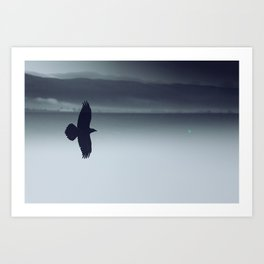 Crow And His Shadow Art Print