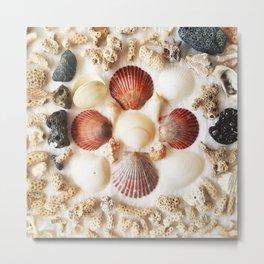 Scallops + Coral x Lucina Metal Print