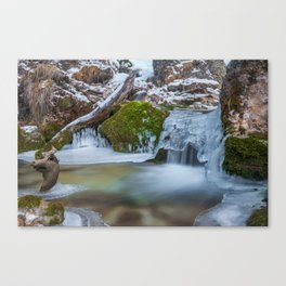 Winter 01 Canvas Print