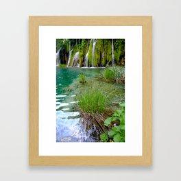 A Pond Framed Art Print