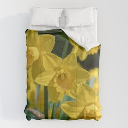 Daffodils in a field Comforters