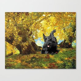 Scottish Terrier in Autumn Woods Canvas Print