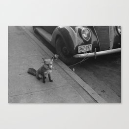 Ford Fox Canvas Print