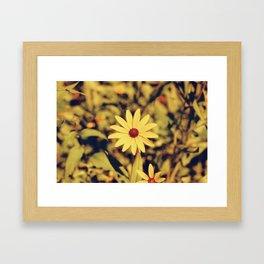 Rescale Flower (2) Framed Art Print