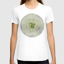 ArcFace - Radicchio Verdon T-shirt